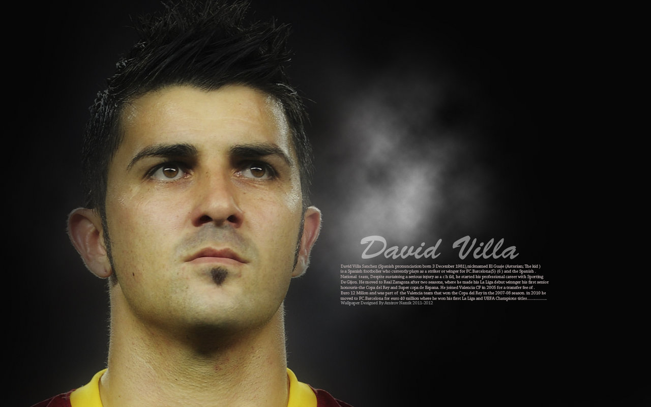 David villa hd wallpapers1 1280x800