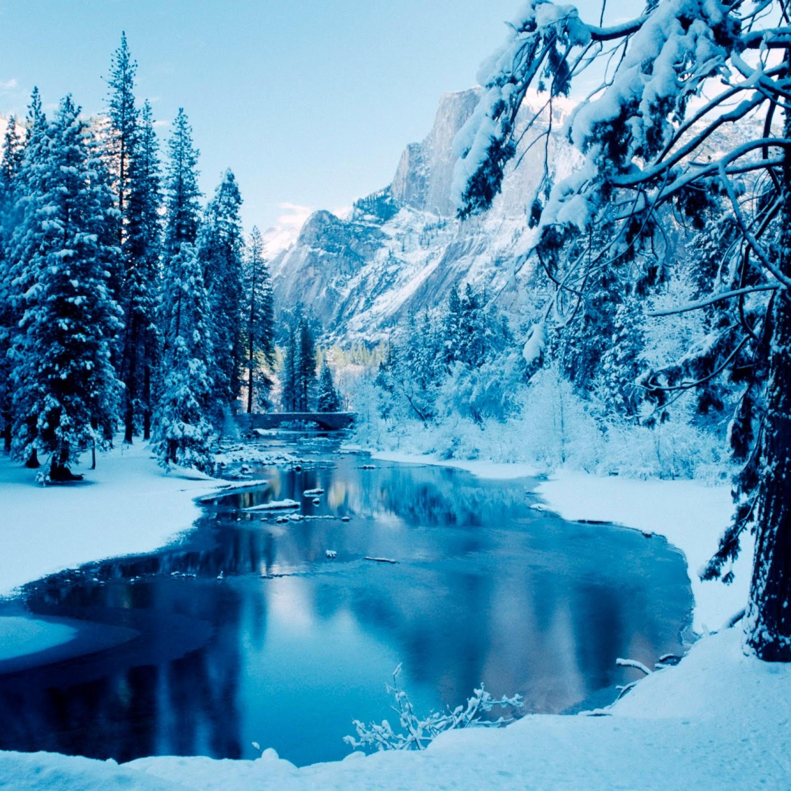 iPad 4 Winter Themed HD Wallpapers 016 1600x1600