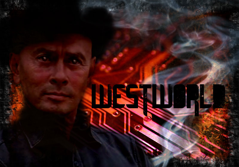 Yul Brynner images WestWorld Poster HD wallpaper and 800x560