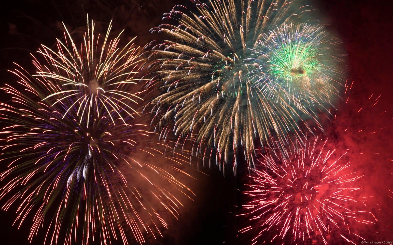 Wallpaper Firework Download Wallpaper DaWallpaperz 1600x1000