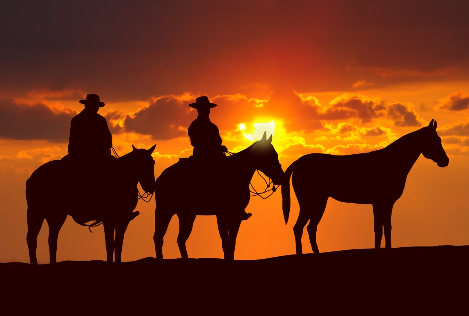 Sweethearts Of The West Cowboys on The Trail The Singing Cowboy 1600x1079
