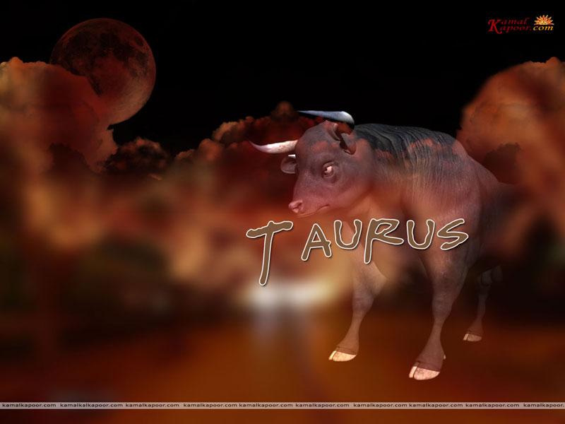 Taurus Wallpaper Taurus Zodiac Symbol Wallpaper Taurus Desktop 800x600