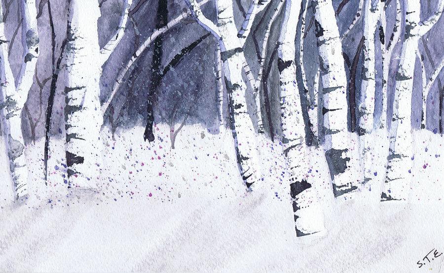 Birch Trees in Winter Wallpaper The Nightly Winter Birch Trees 900x554