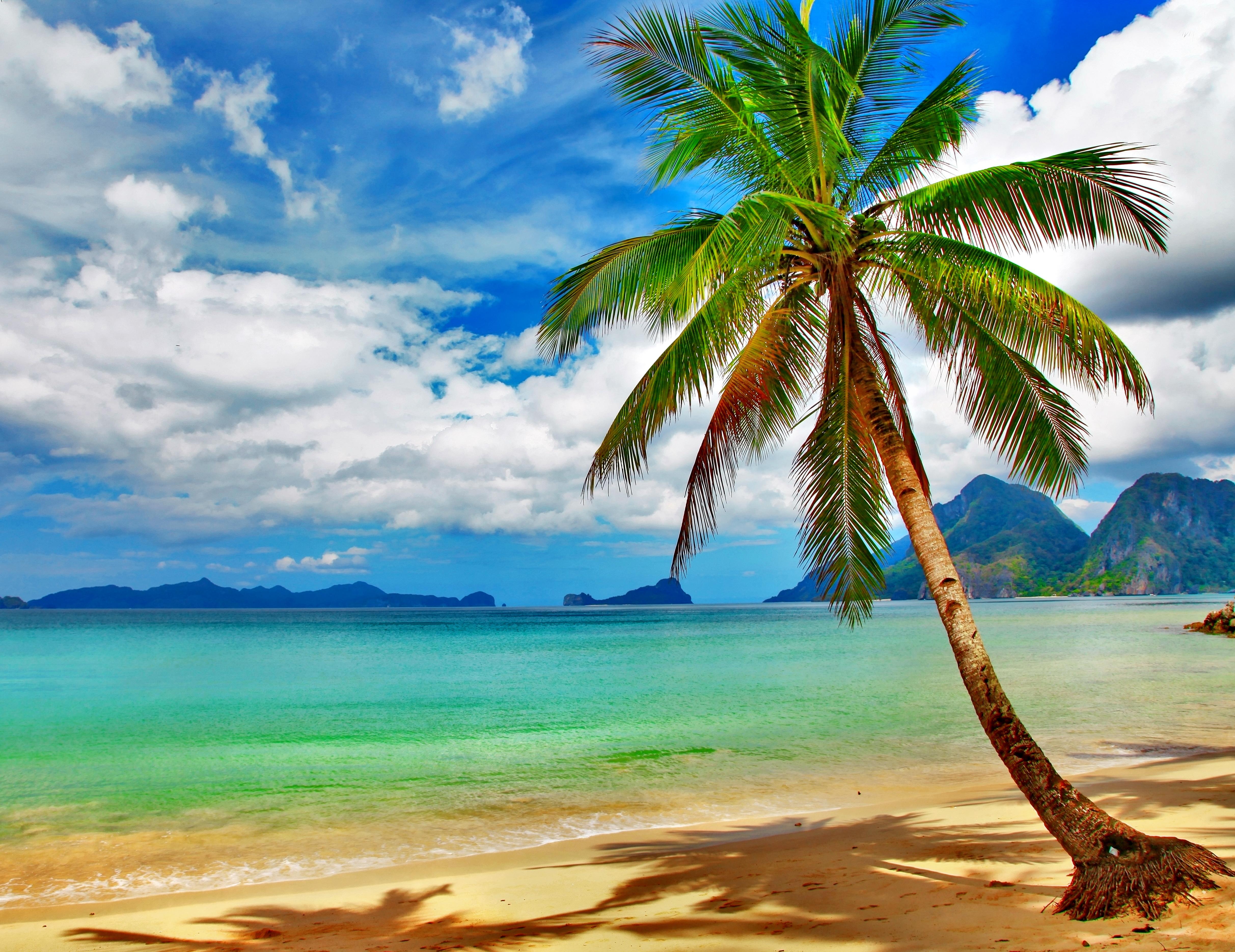 Hd Tropical Island Beach Paradise Wallpapers And Backgrounds: 4850x3740px Tropical Beach Wallpaper Desktop