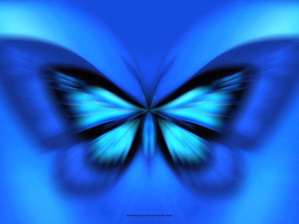 Blue Butterflies Wallpaper wallpaper Blue Butterflies Wallpaper hd 1024x768