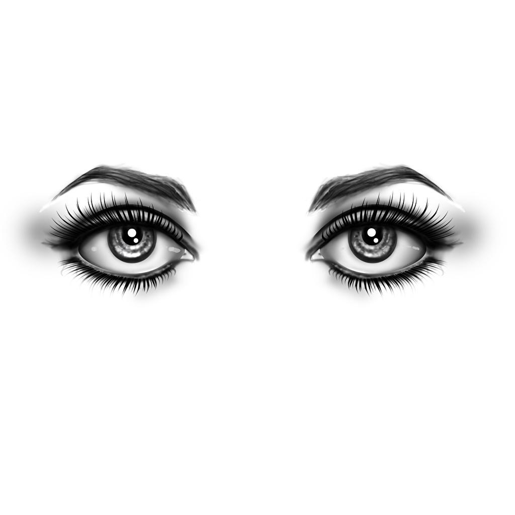 Desktop Wallpapers Eyes Eyelash