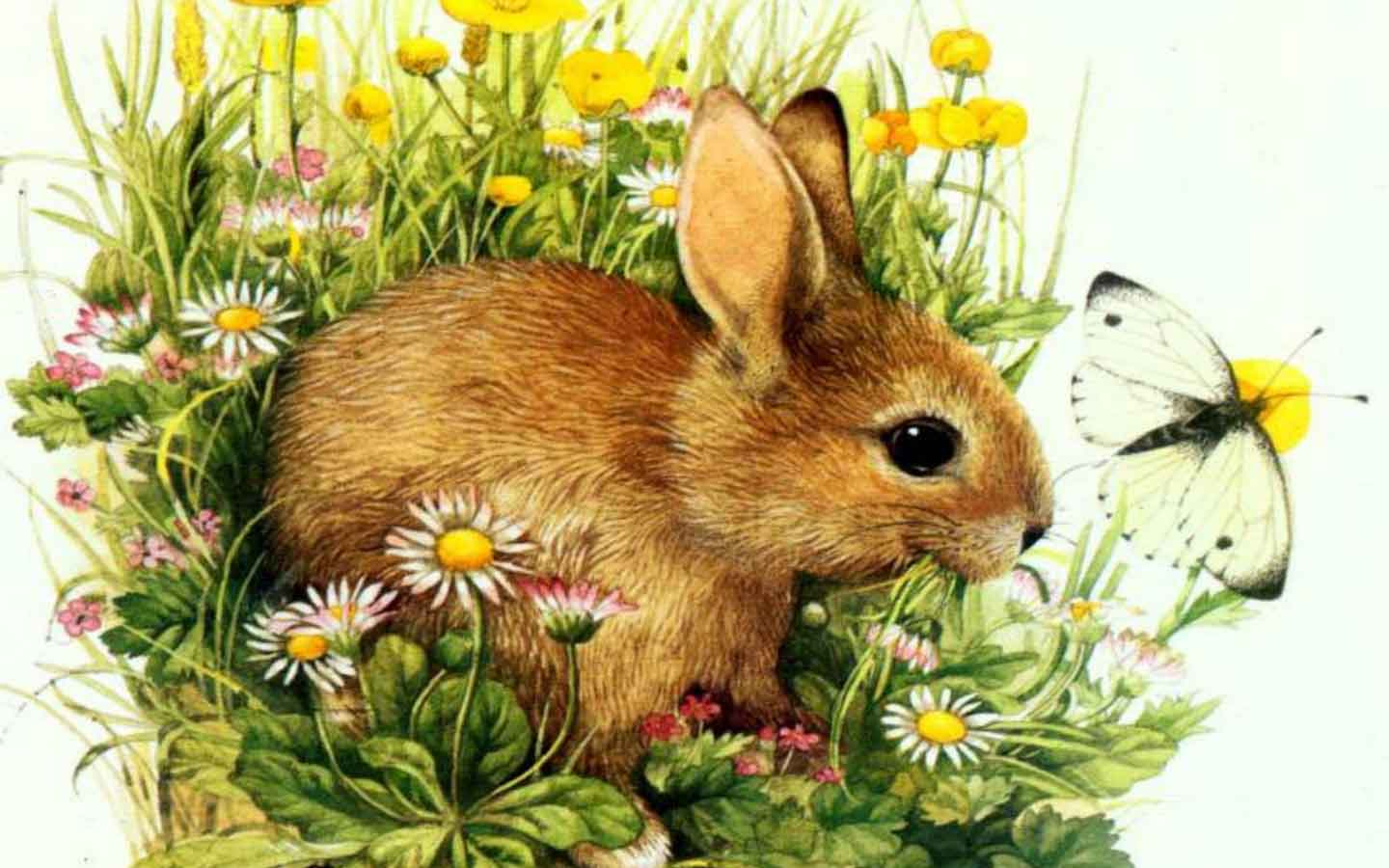 Free Download Cute Easter Wallpapers 1440x900 For Your Desktop