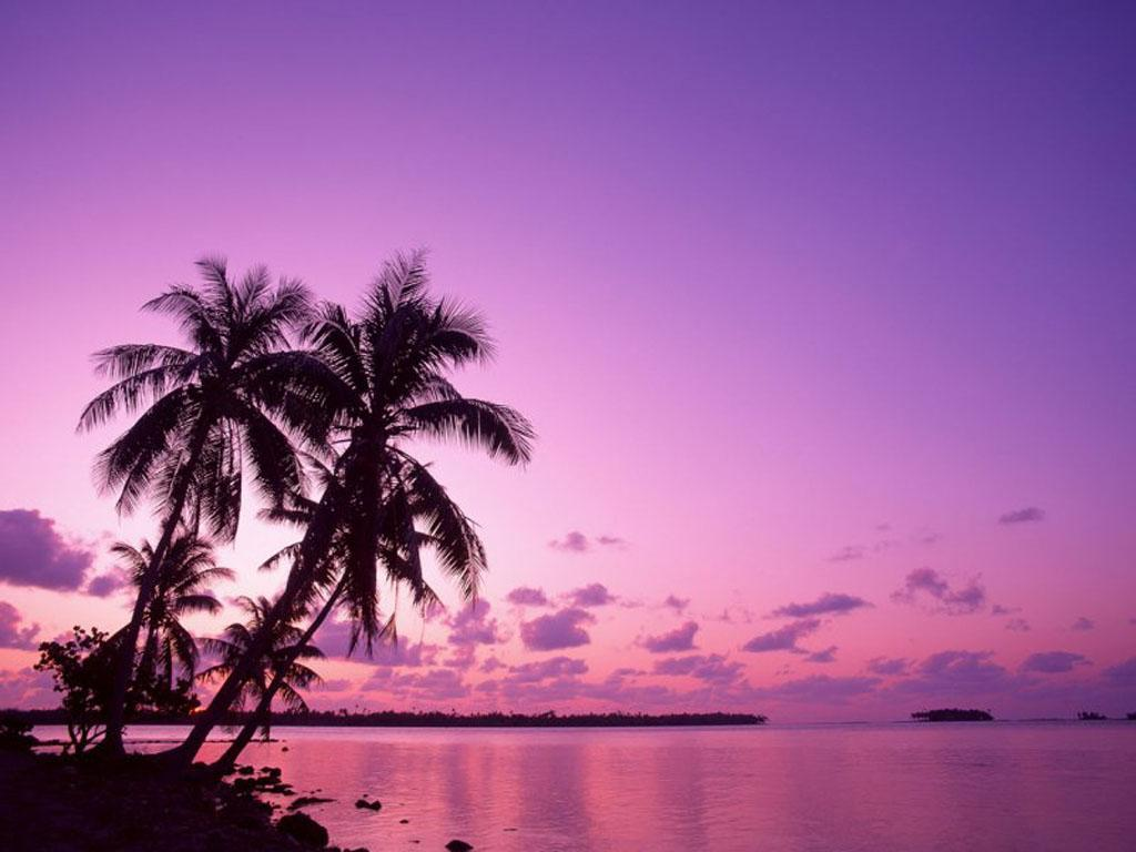 download Purple Sunset On The Beach 9101 Hd Wallpapers in 1024x768