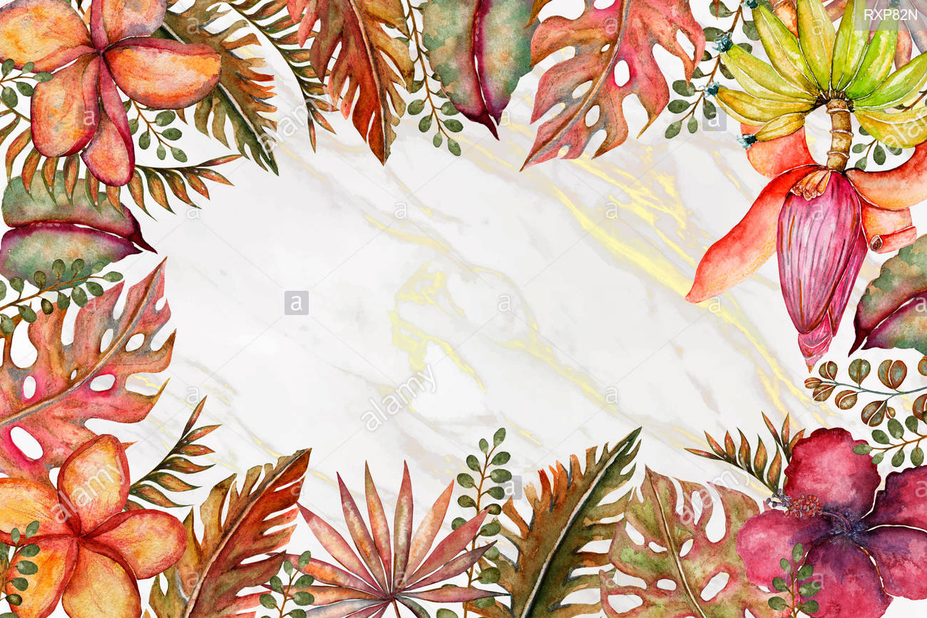Cute colorful floral tropical frame border on white background 1300x867