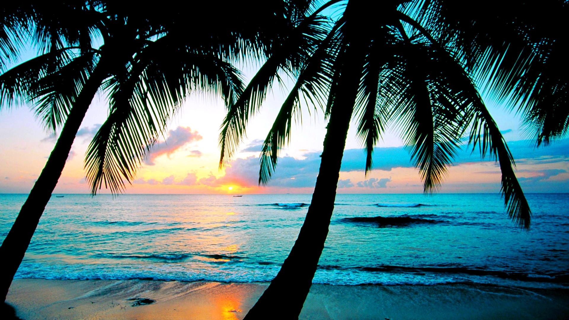 Caribbean Sunset Wallpaper Desktop - WallpaperSafari