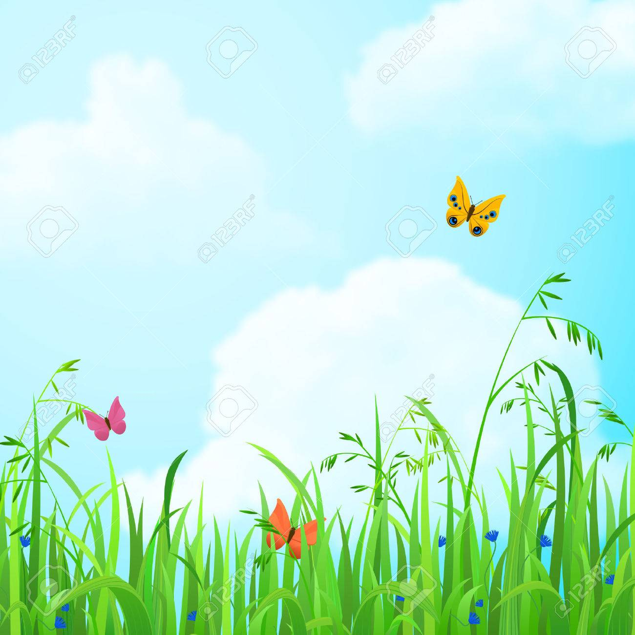 Nice Shiny Fresh Butterfly Flower Grass Lawn Background With 1300x1300