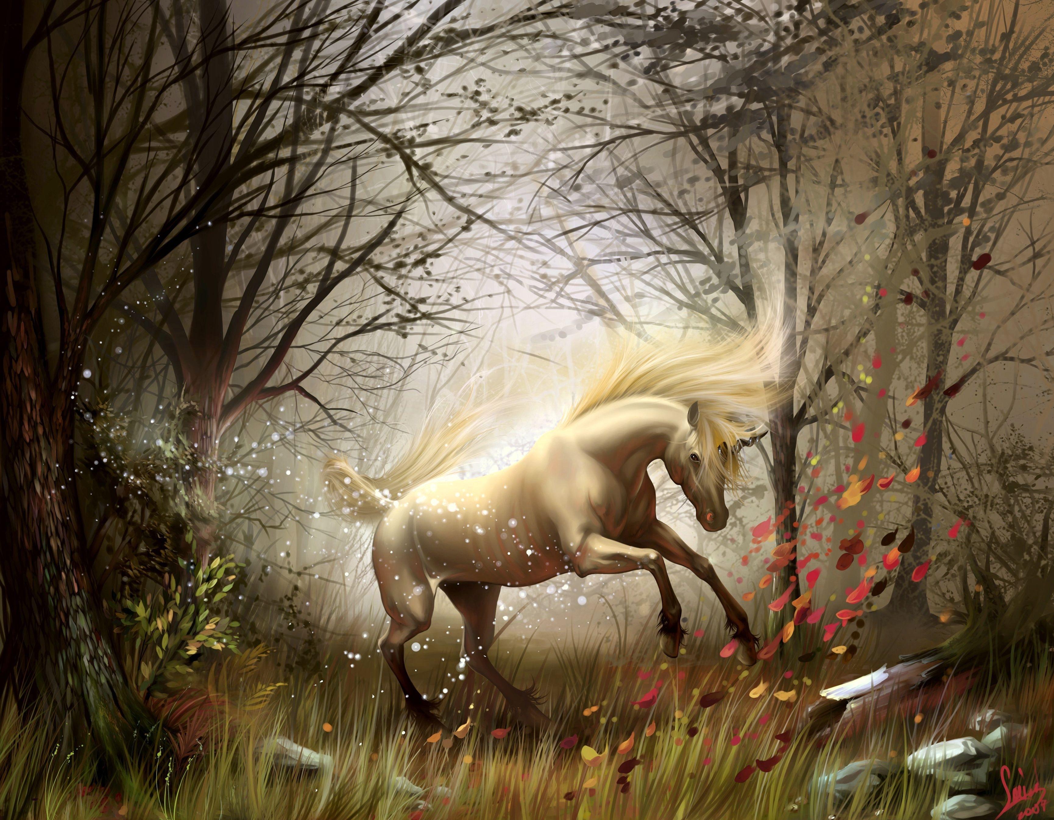Fantasy   Unicorn Wallpaper 3460x2690