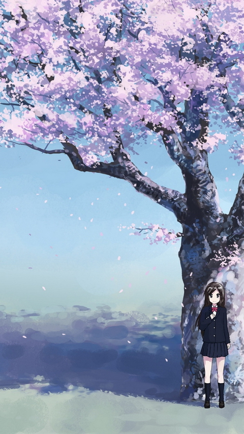 Anime Phone Wallpapers 480 x 854 Wallpaper Backgrounds Images 480x854
