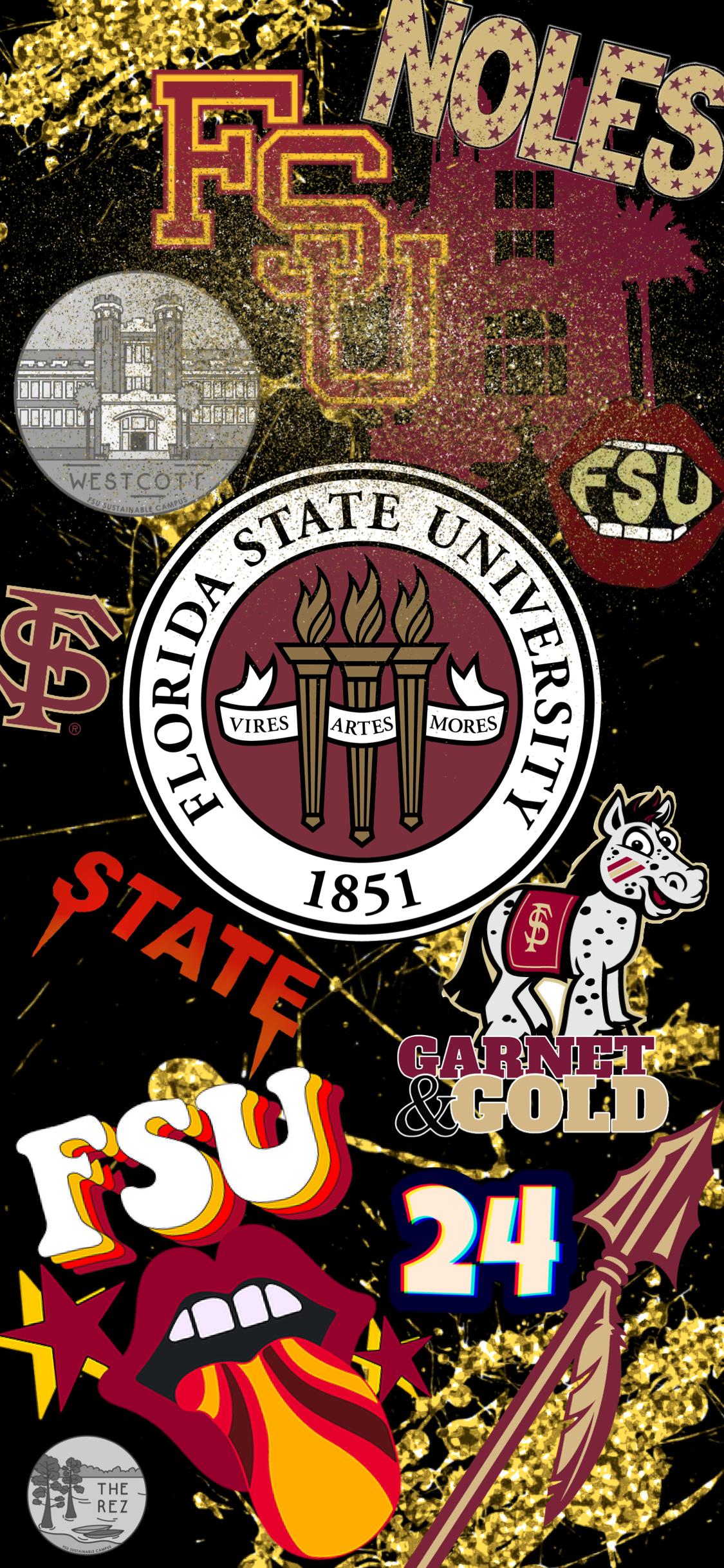 fsu wallpaper Florida state seminoles football Florida state 1125x2436
