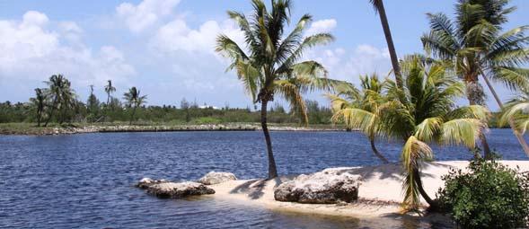 Cayman Islands Wallpaper Screensavers Cayman Cayman Islands 589x255