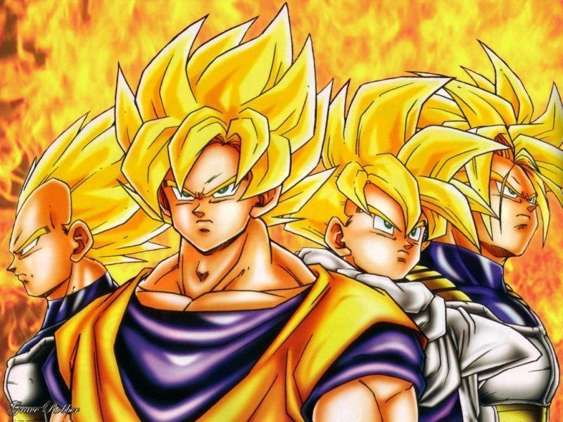 team of saiyans   Dragon Ball Z Wallpaper 26866844 800x600