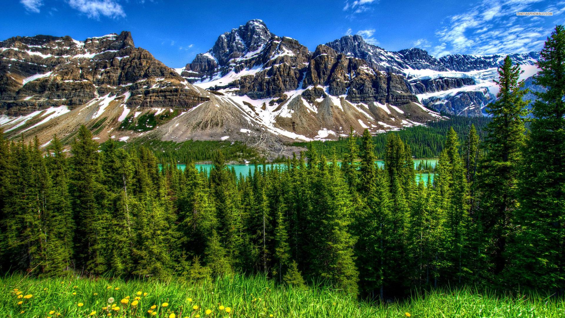 Download Nature Desktop Wallpapers 1920x1080 77 Pc Wallpaper