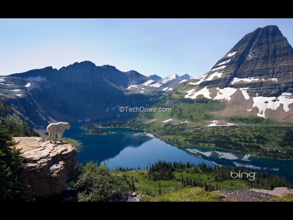 Download Bing Wallpaper Pack from Microsoft Techdows 1024x768