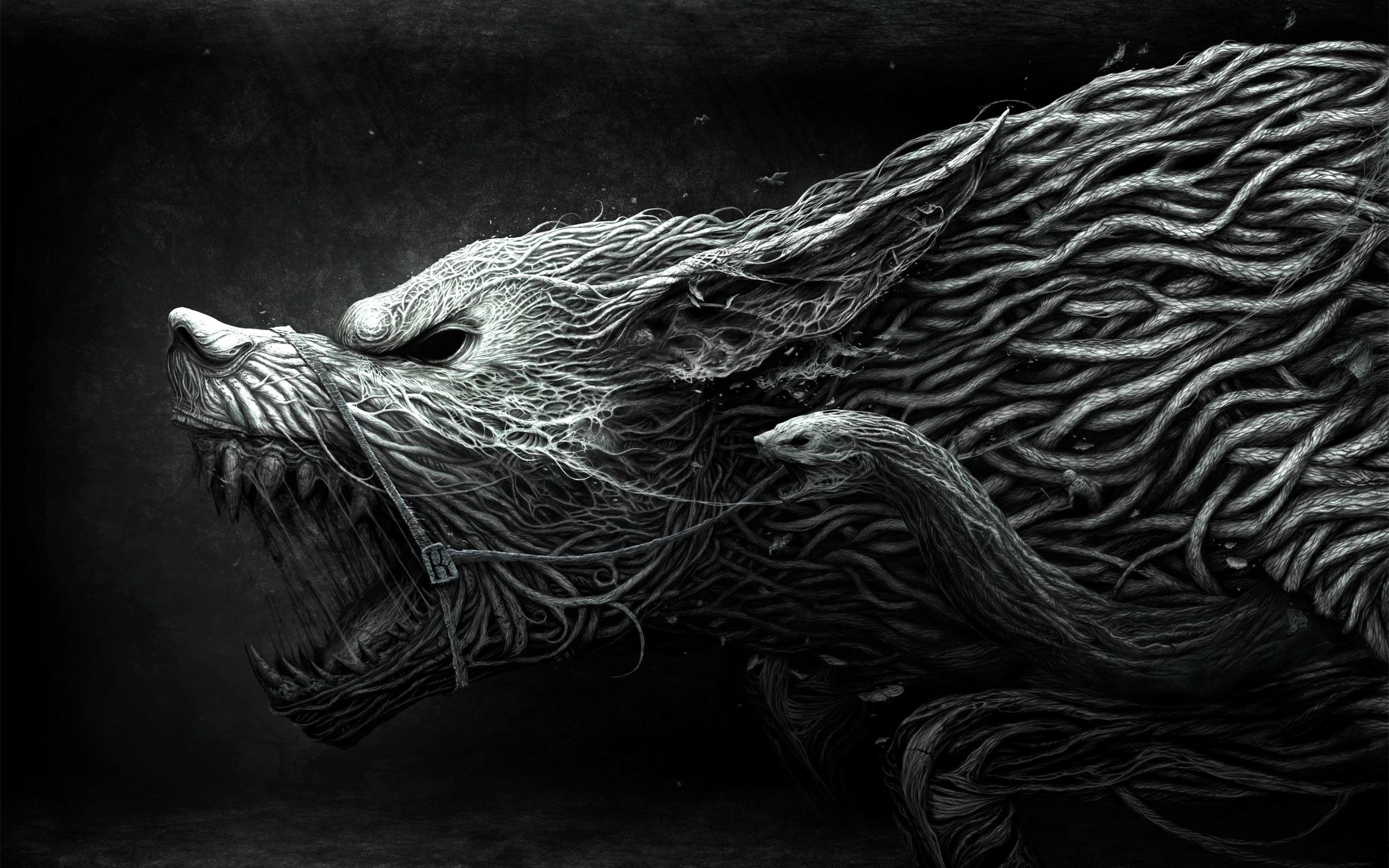 Drawing Aggression Black White Wallpaper Background Ultra HD 4K 3840x2400