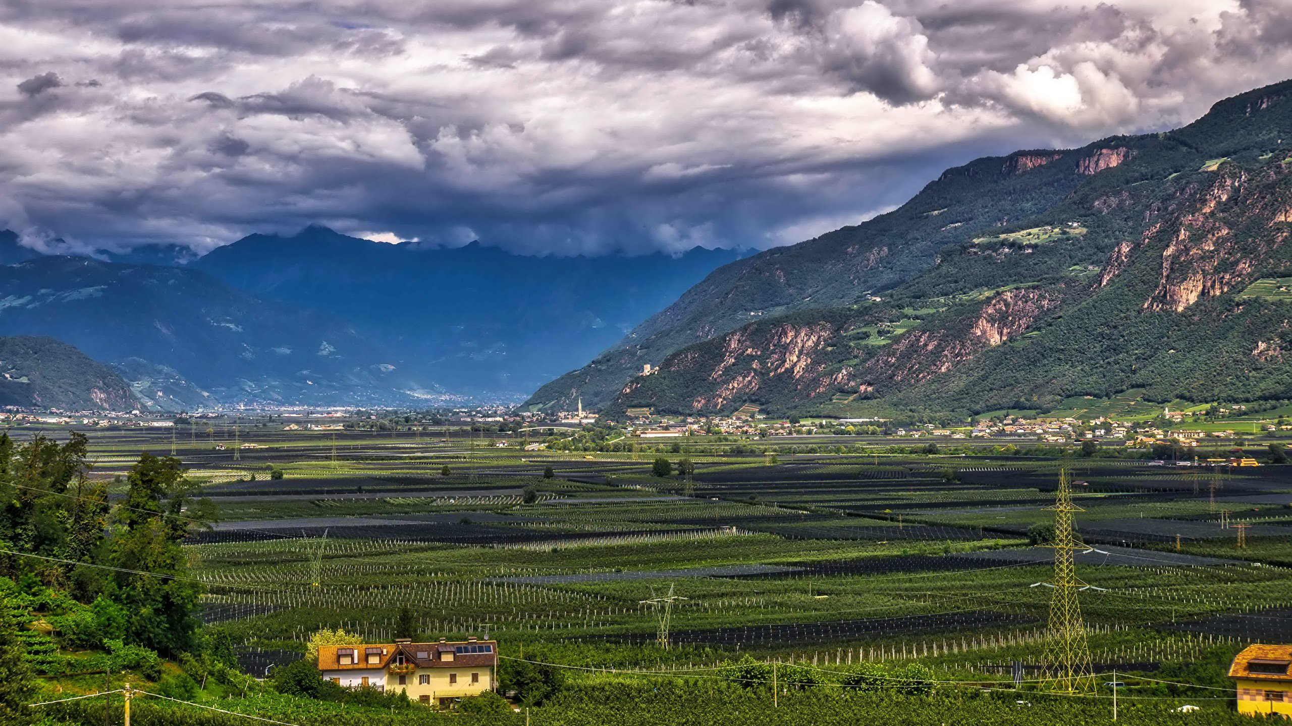 Pictures Italy Bolzano Nature mountain Fields Landscape 2560x1440 2560x1440