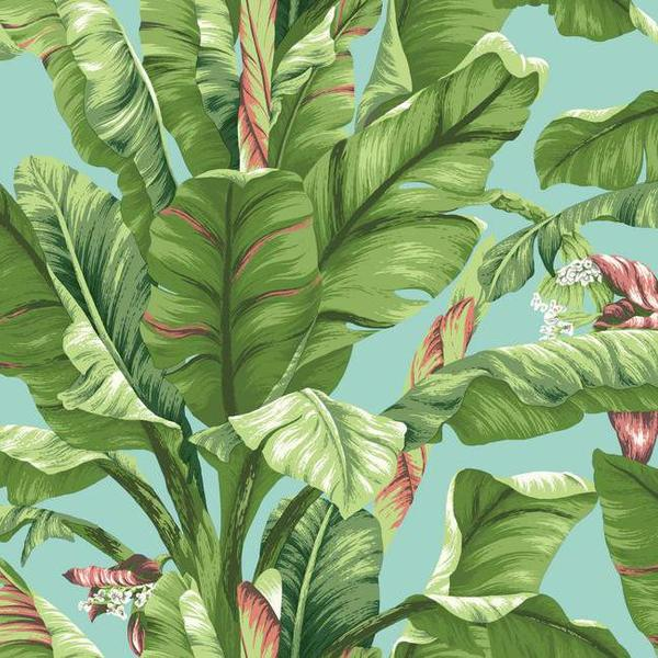 Sample Banana Leaf Wallpaper in Green and Blue design by York Wallcove 600x600