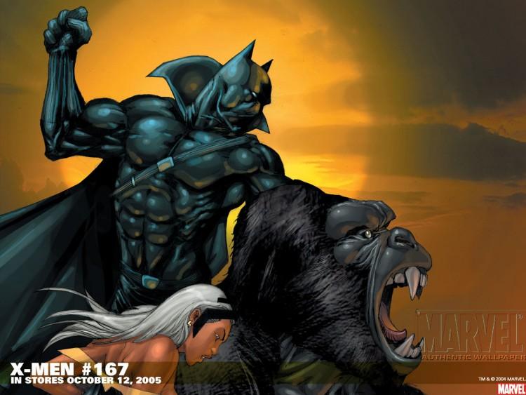 Black Panther Comic Wallpaper: Black Panther Marvel IPhone Wallpaper