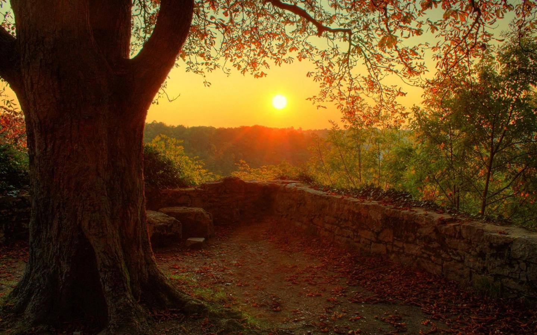 1440x900 Autumn sunset scenery backgrounds for desktop wide wallpaper 1440x900