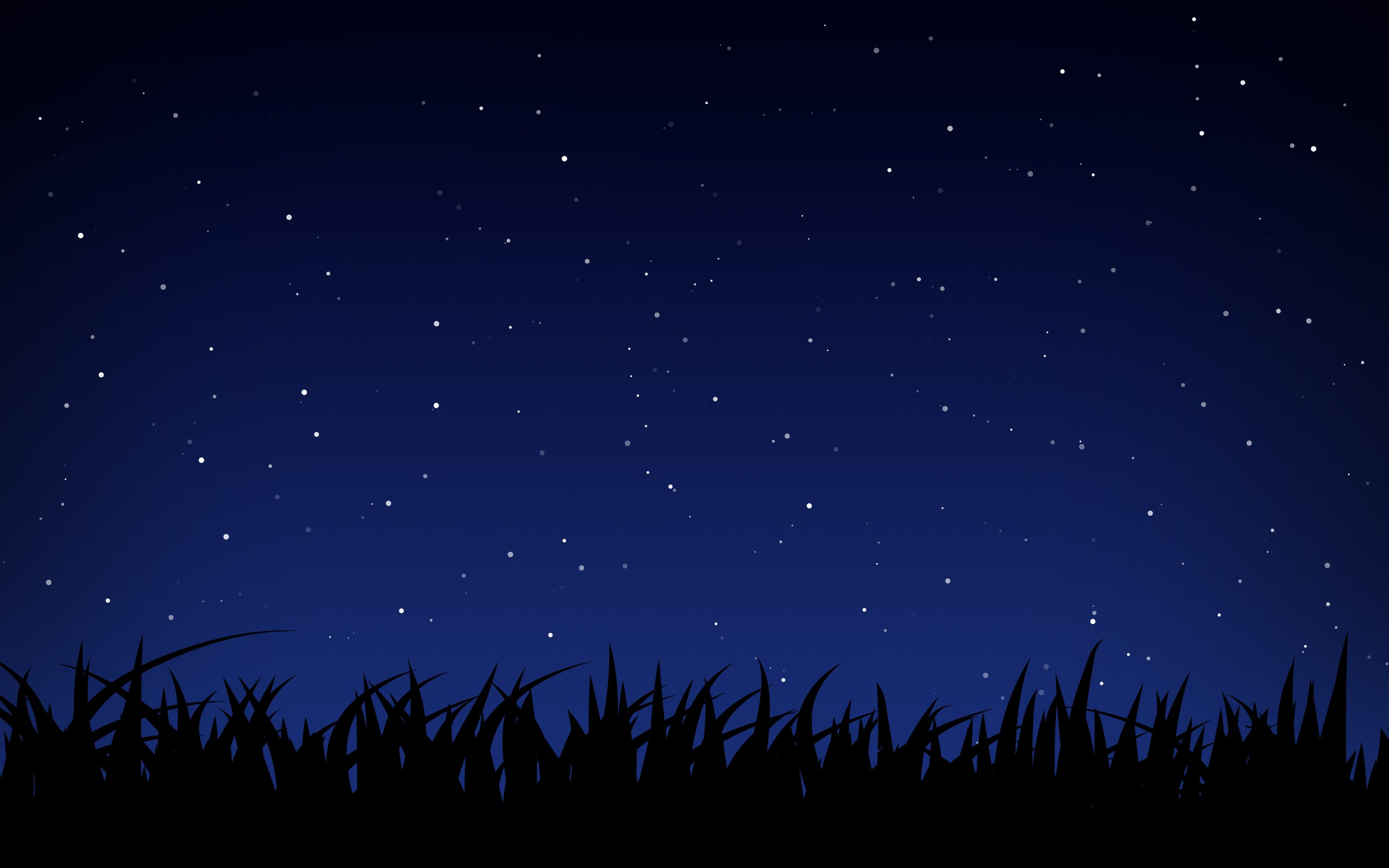 Starry Night HD Backgrounds 2560x1600
