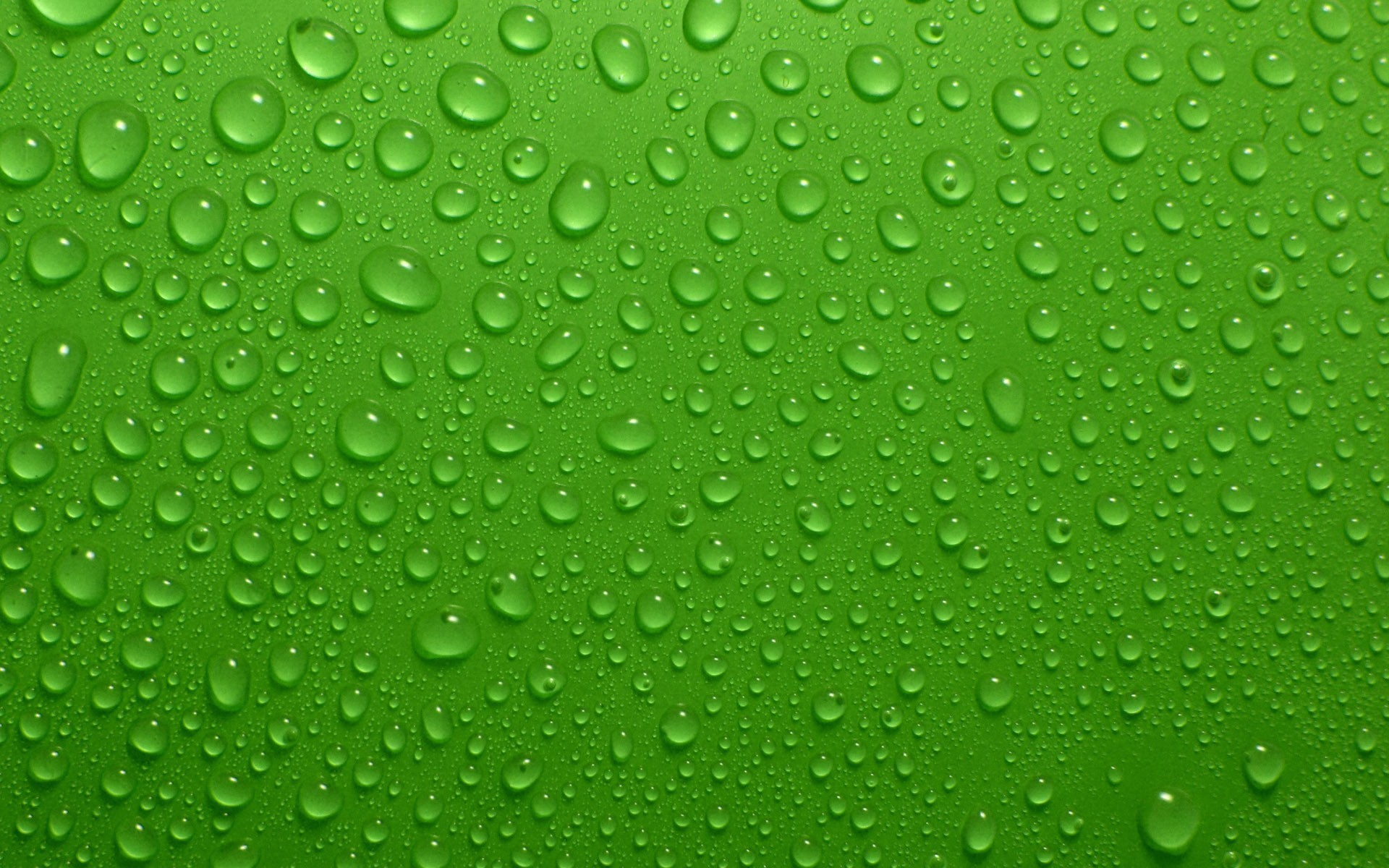 Wallpapers for Green Resolution 1920x1200px 1920x1200