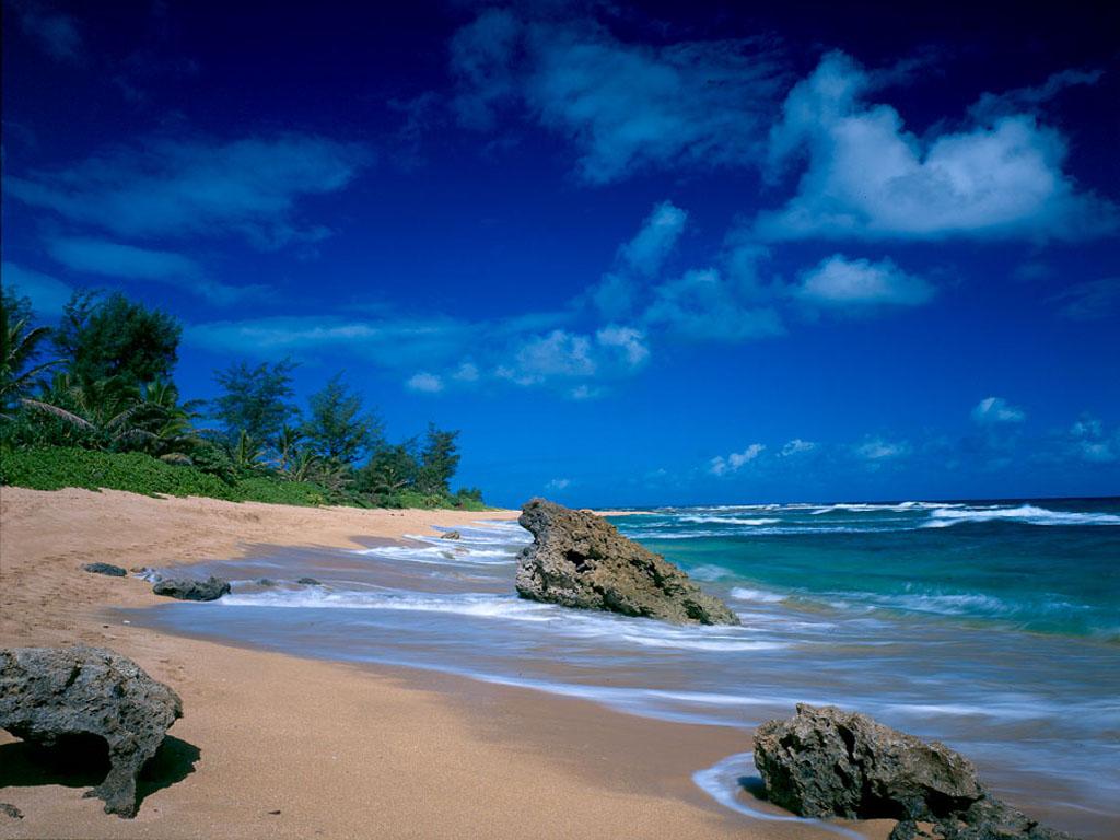 Tropical Beach Wallpaper Desktop Tropical Beach Wallpaper 040 1024x768