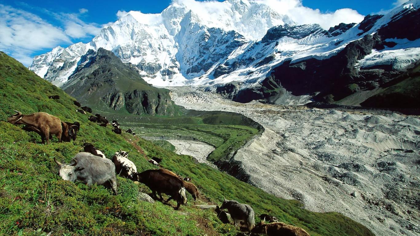 Download Kangshung Glacier Tibet wallpaper 1366x768
