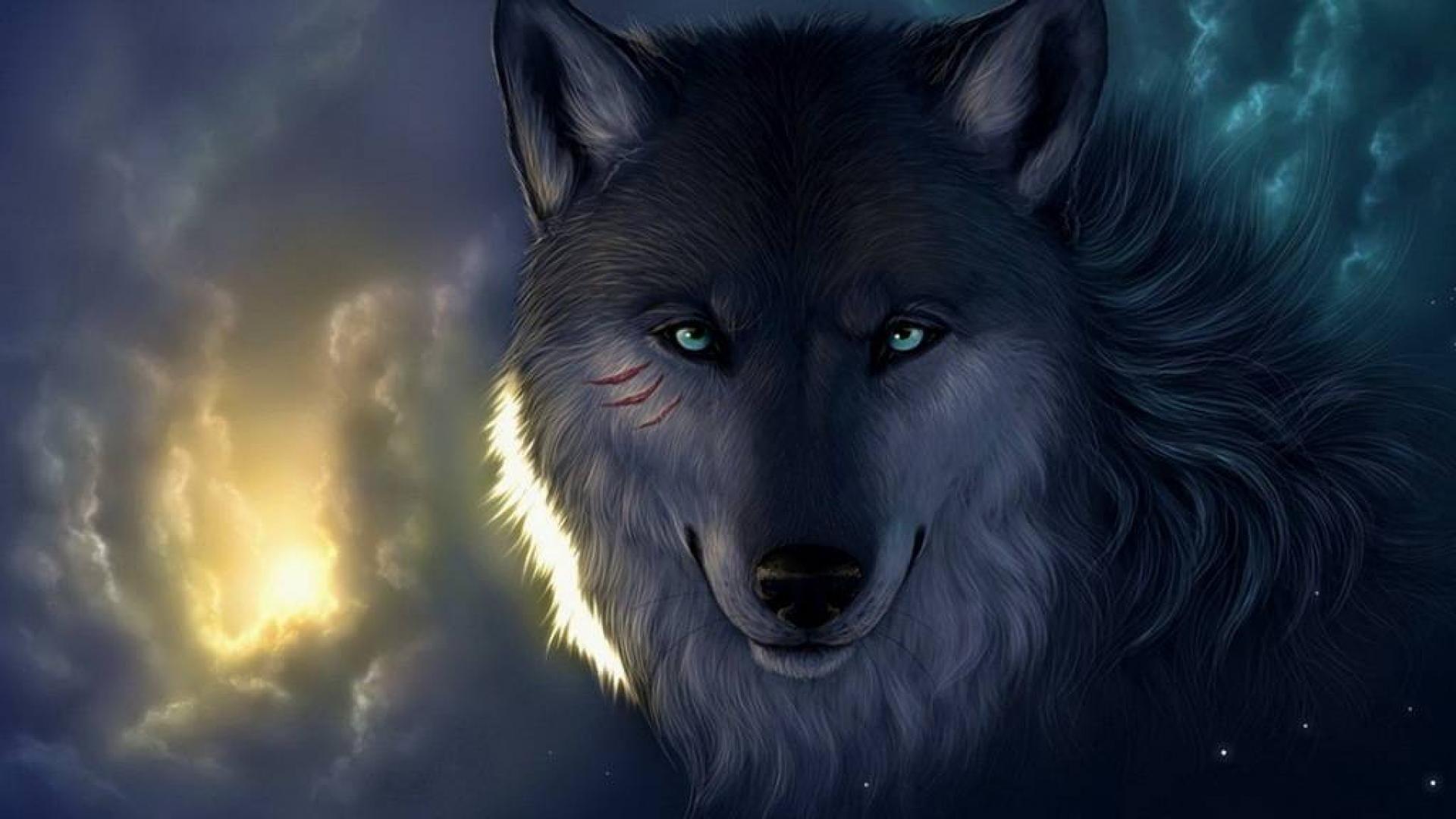 67 Badass Wolf Wallpapers on WallpaperPlay 1920x1080