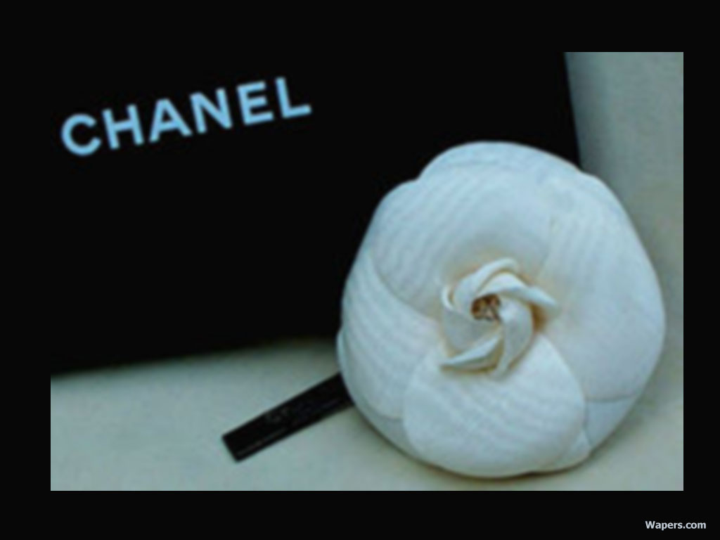 Chanel   Chanel Wallpaper 654599 1024x768