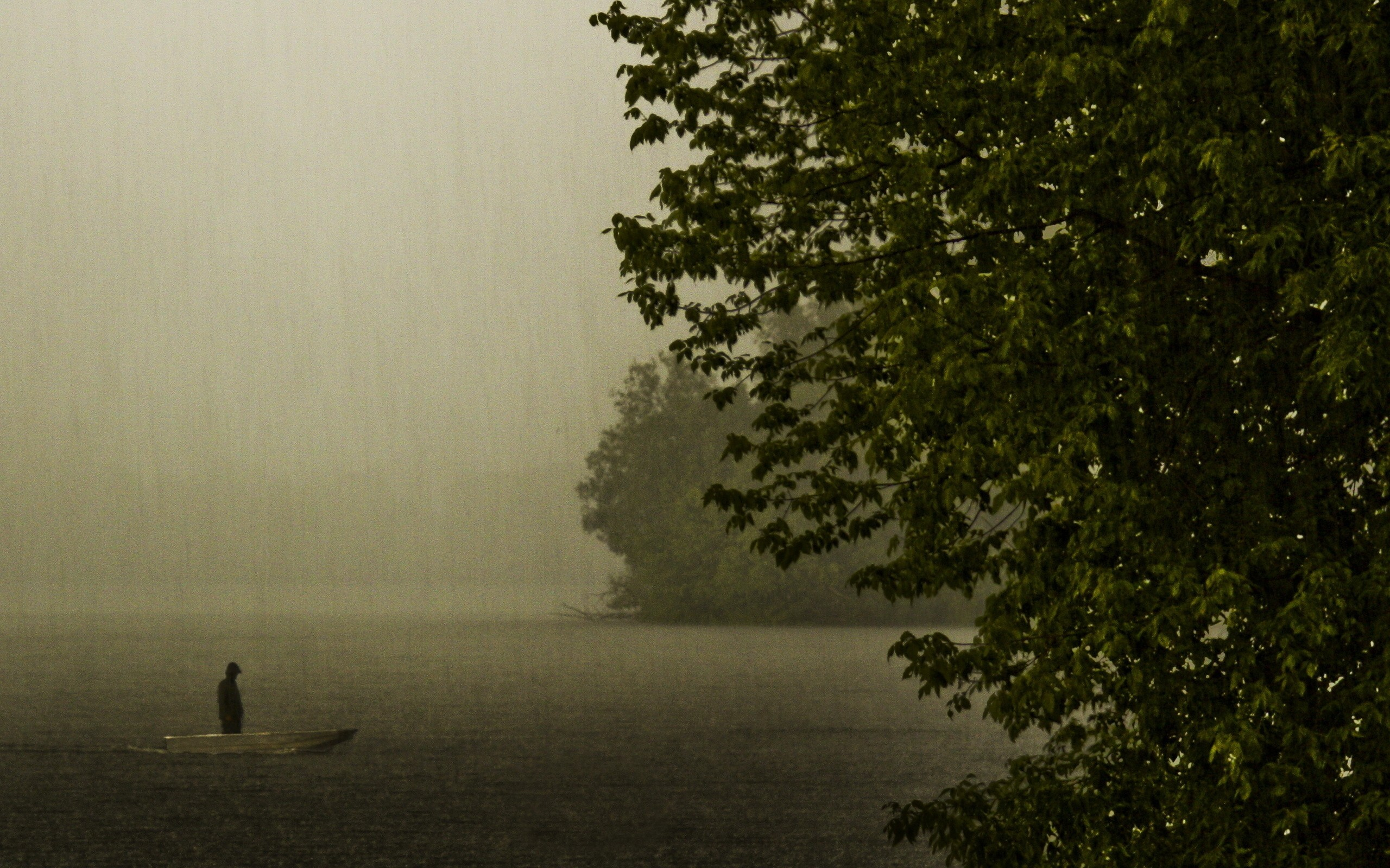 Rainy Day on the Lake wallpapers Rainy Day on the Lake stock photos 2560x1600