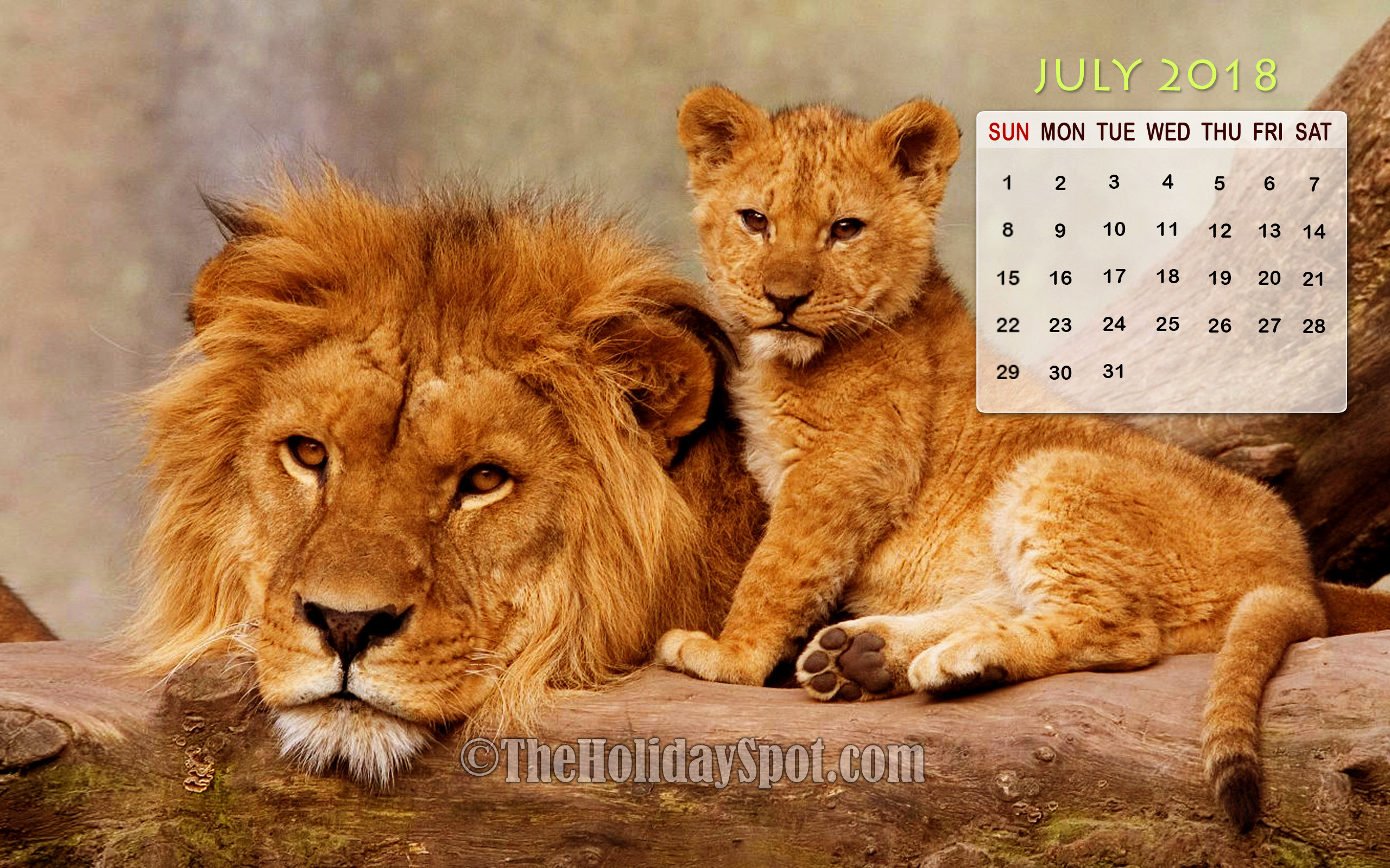 July 2018 Calendar Wallpapers 2560x1600