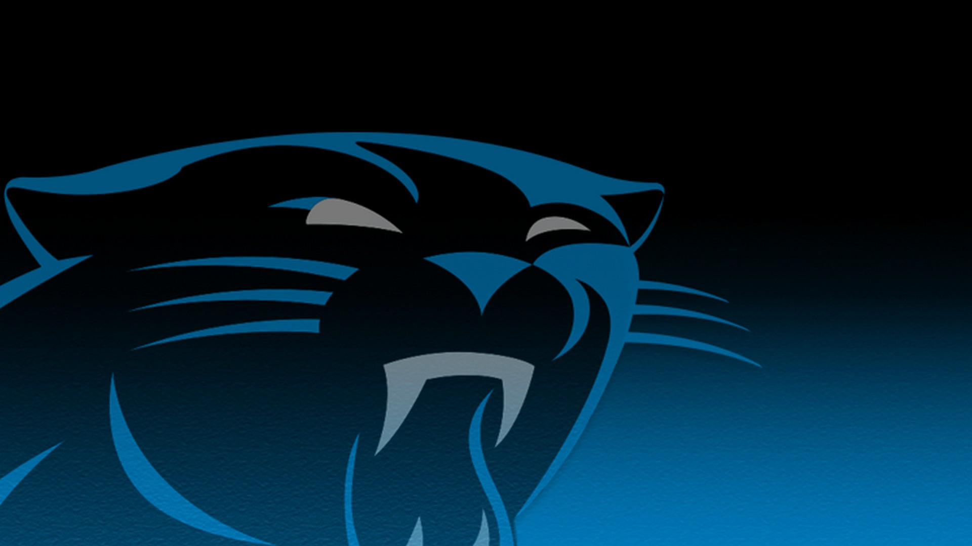 Carolina Panthers Wallpaper Background 30 Background Pictures 1920x1080