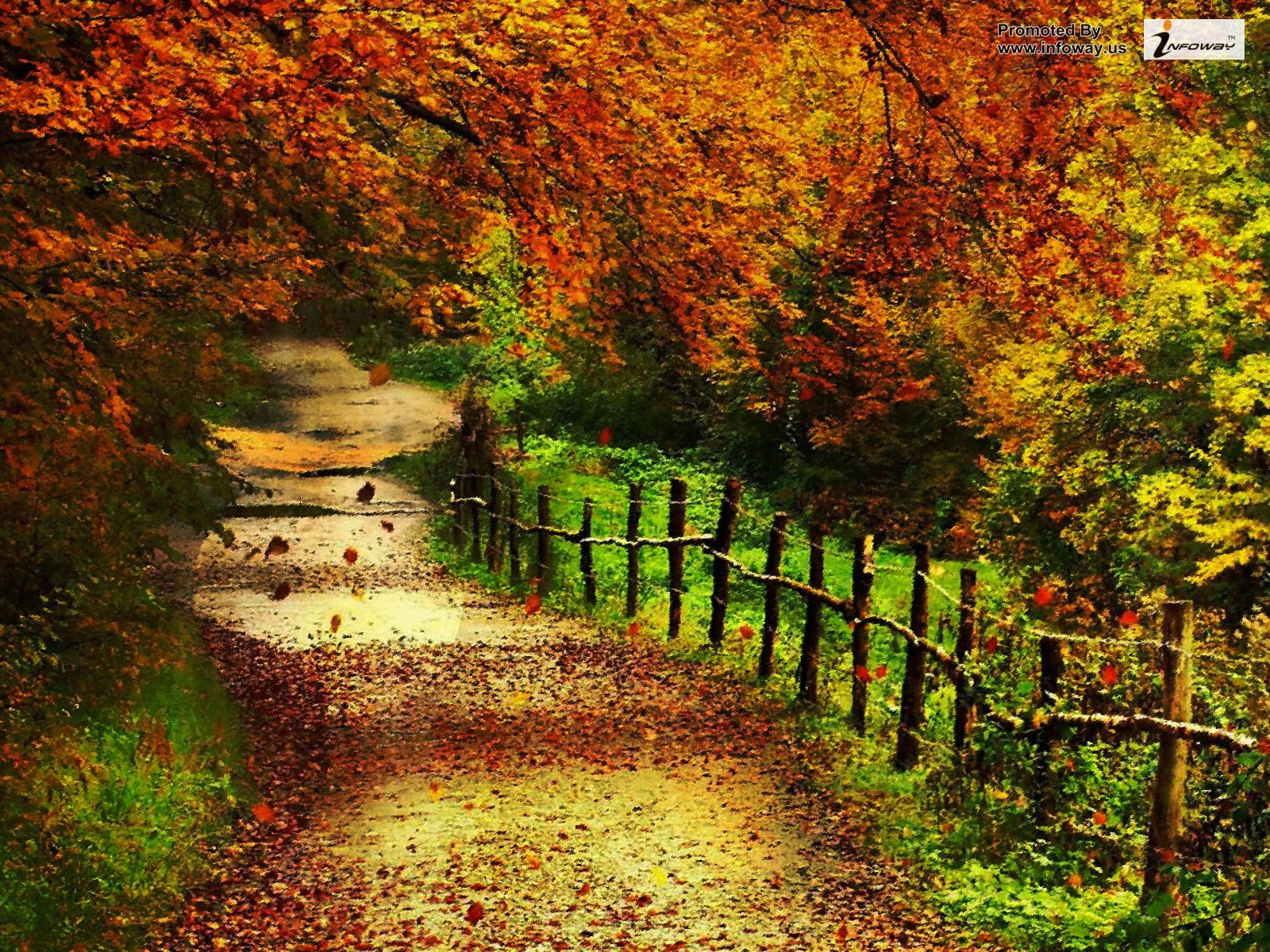 Free Download Beautiful Autumn Scenery Wallpapers 01 1600x1200 For Your Desktop Mobile Tablet Explore 62 Fall Scenery Wallpapers Free Fall Wallpapers For Desktop Free Desktop Wallpaper Autumn Scenery