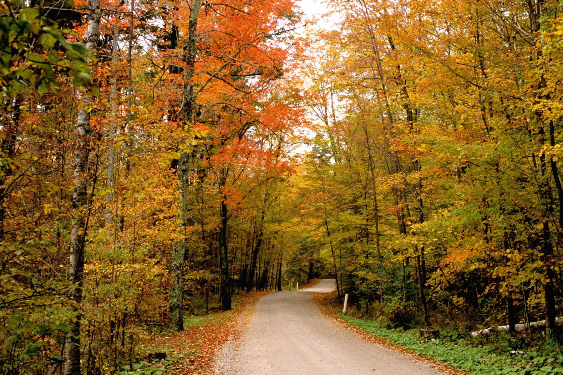Fall Country Scenes Wallpaper Wallpapersafari