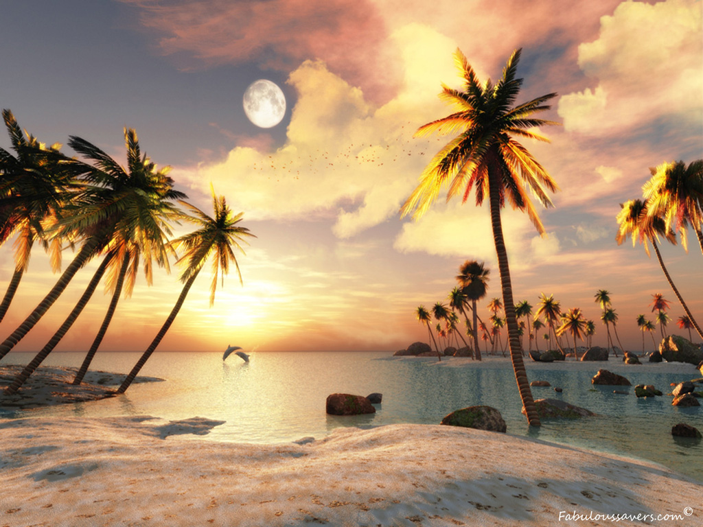 Beautiful 3D Beach computer desktop wallpapers pictures images 1024x768