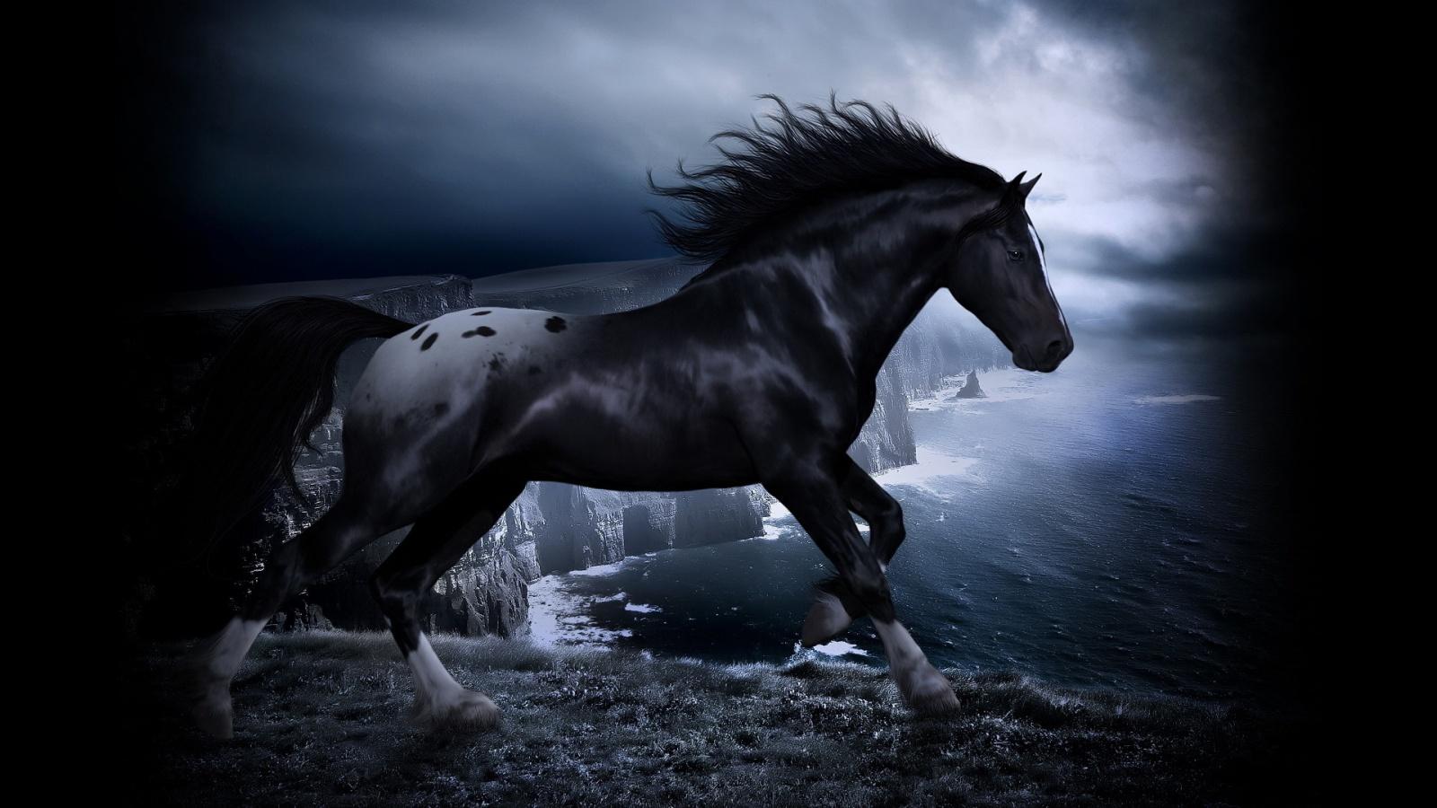 72 Horse Pictures For Desktop Background On Wallpapersafari