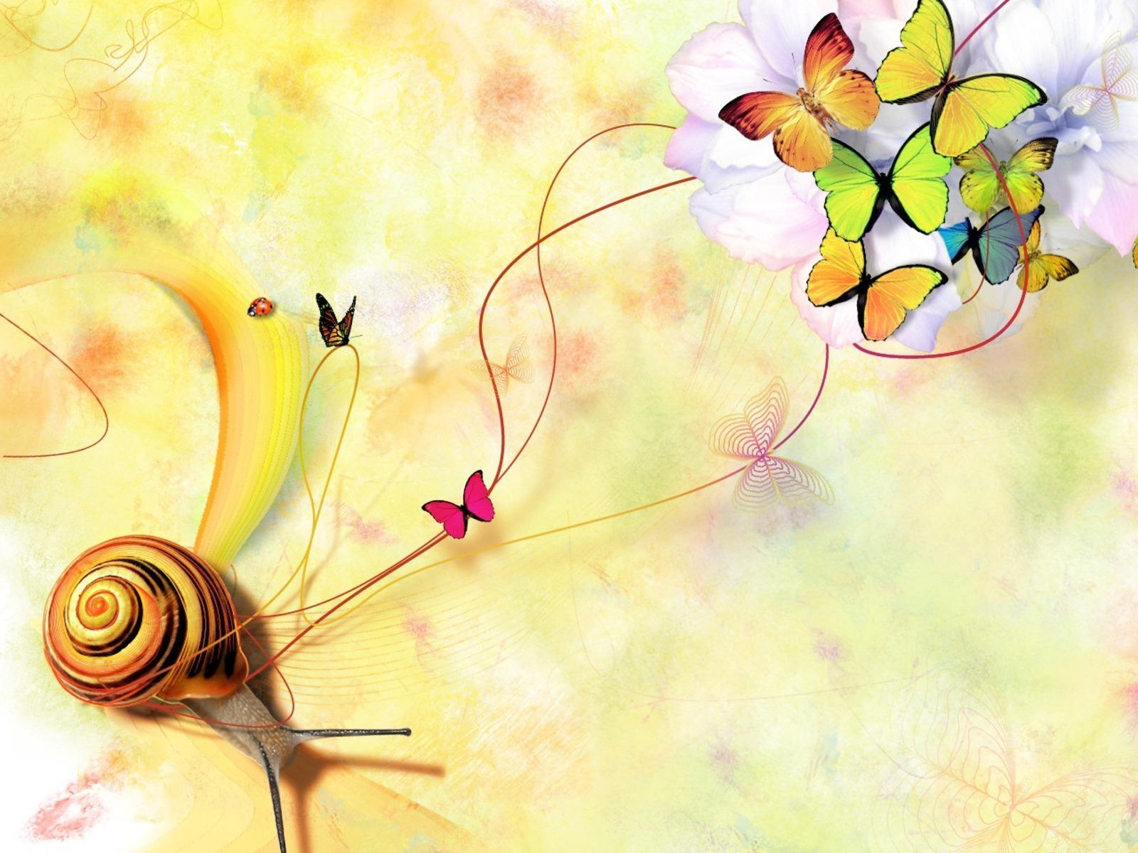 Beautiful Butterflies   Butterflies Wallpaper 9481993 1600x1200