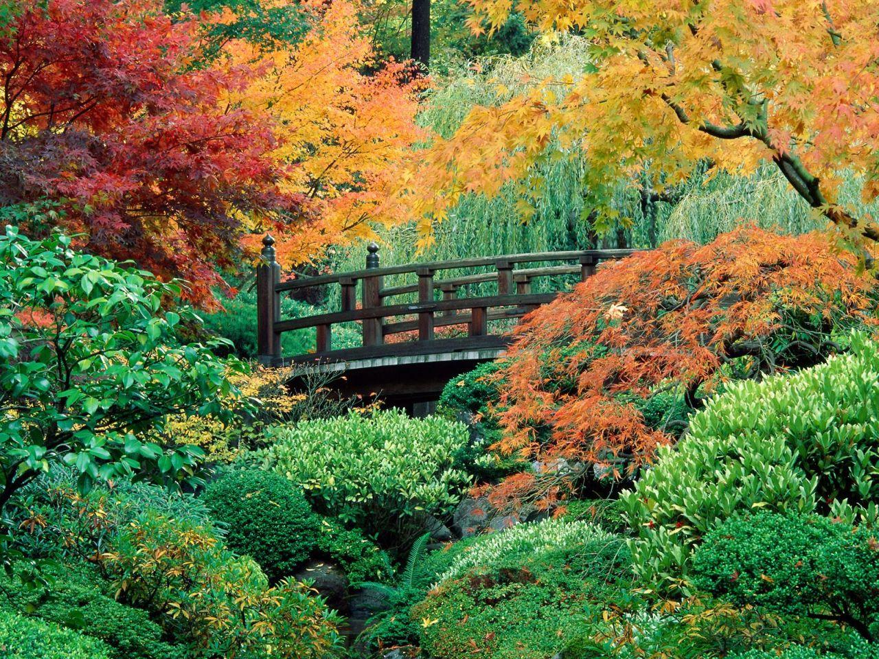 Download Autumn Scene wallpaper Autumn scene 7 1280x960