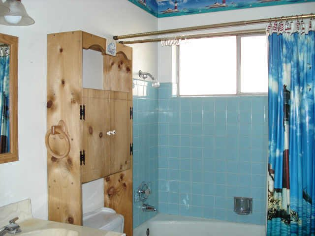 Etched glass shower doors with swans on them How 1980s The toilet 640x480