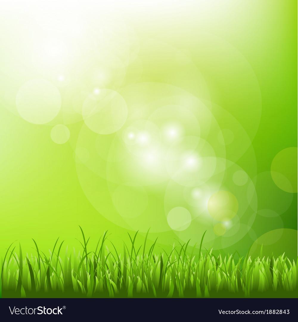 Background Desktop Lawn Vector Images 53 1000x1079