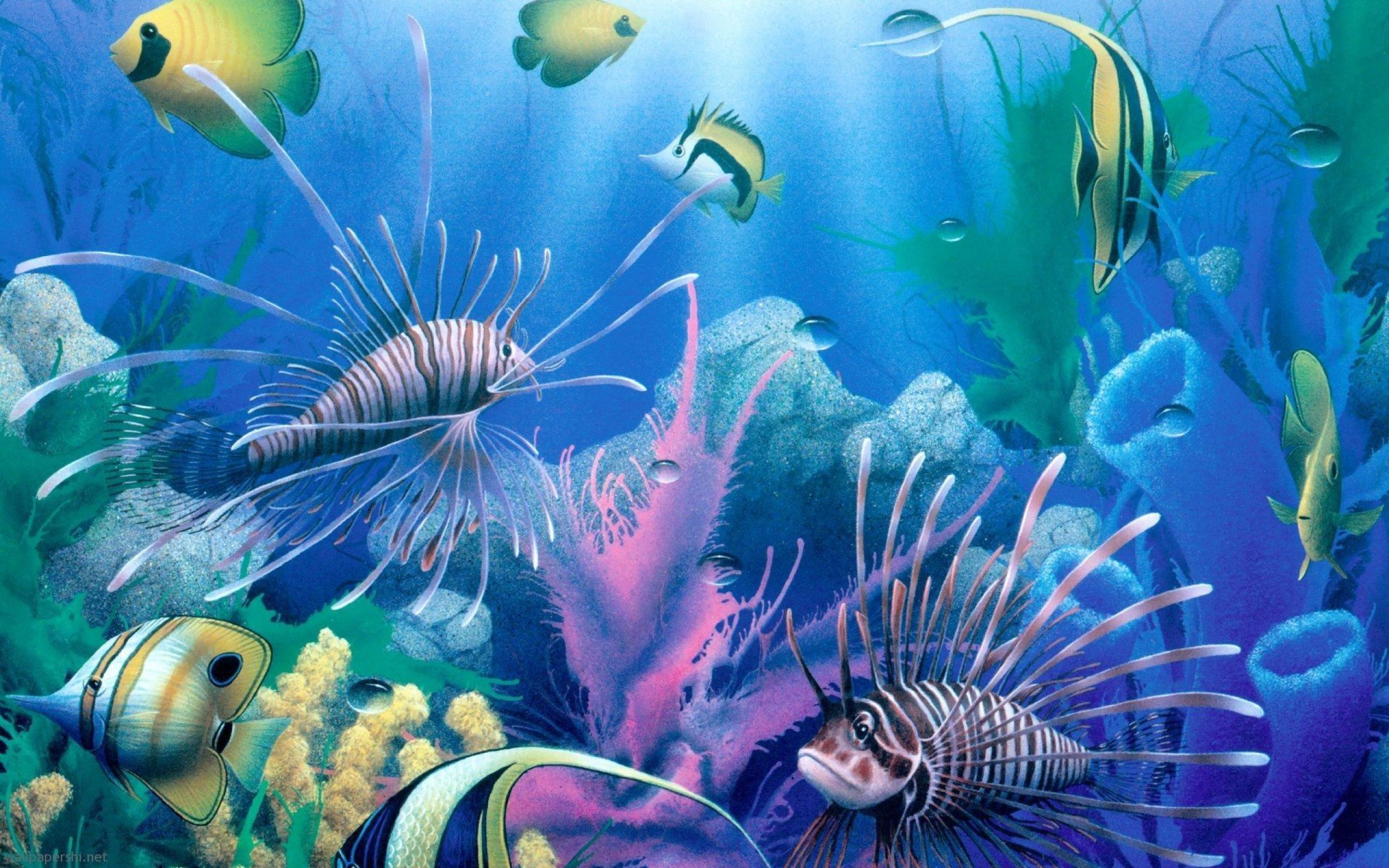 Deep Sea Wallpaper HD Freetopwallpapercom 2560x1600