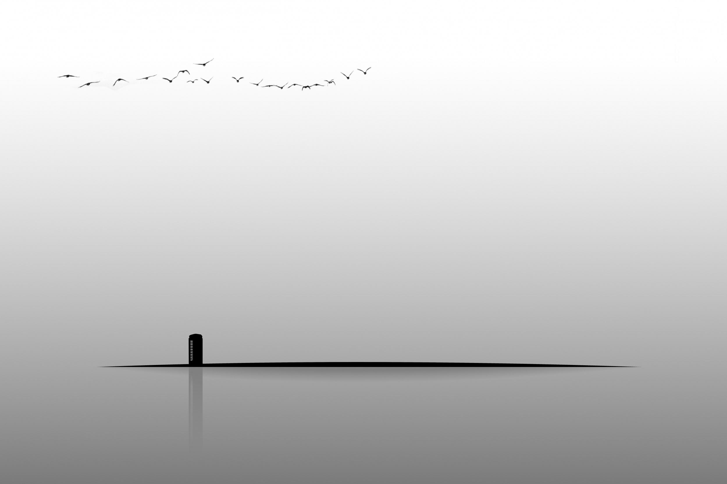 telephone booth minimalist wallpaper birds shadow vector wallpaper 2500x1667