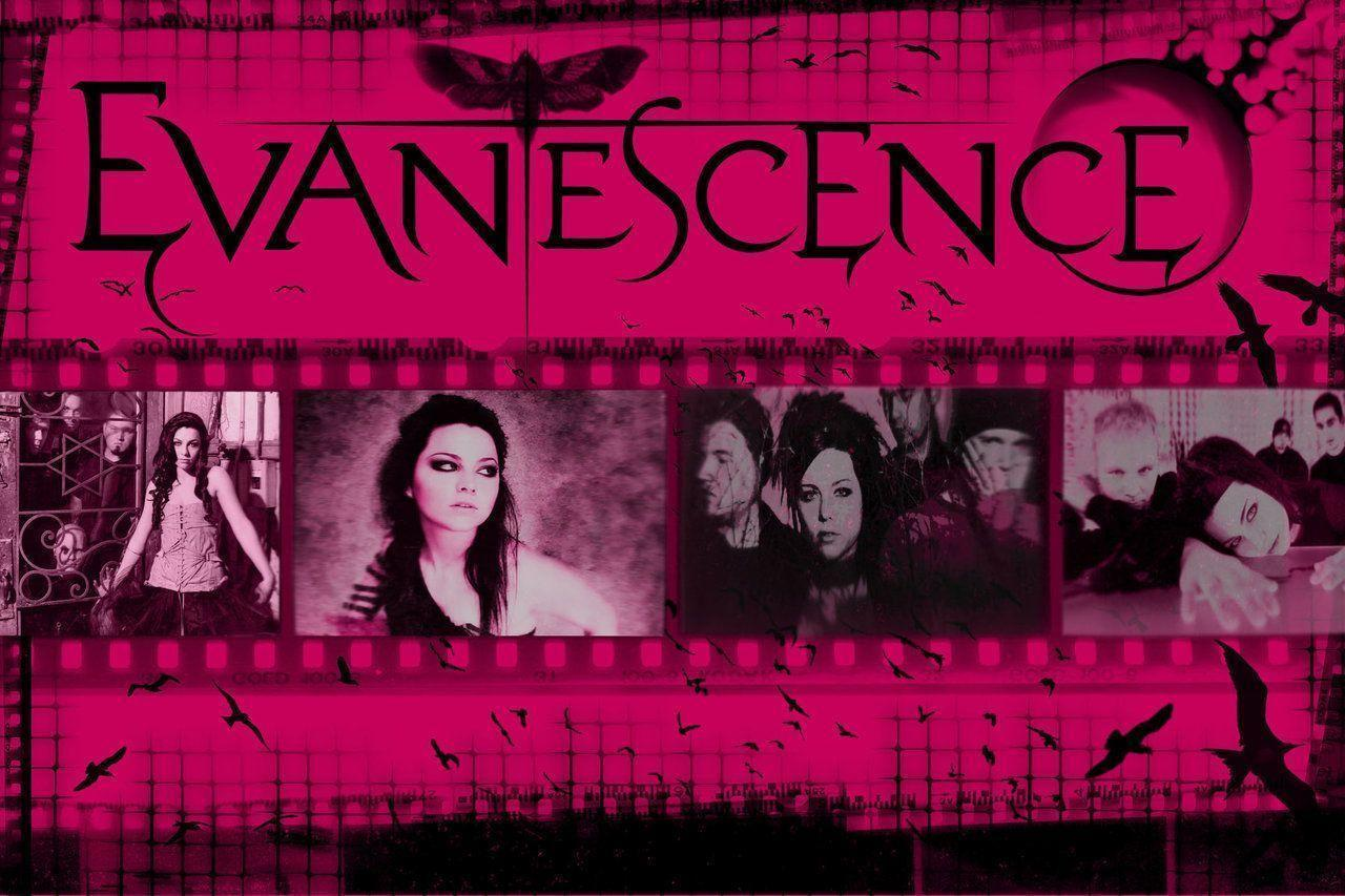 Evanescence Wallpapers 2016 1280x853