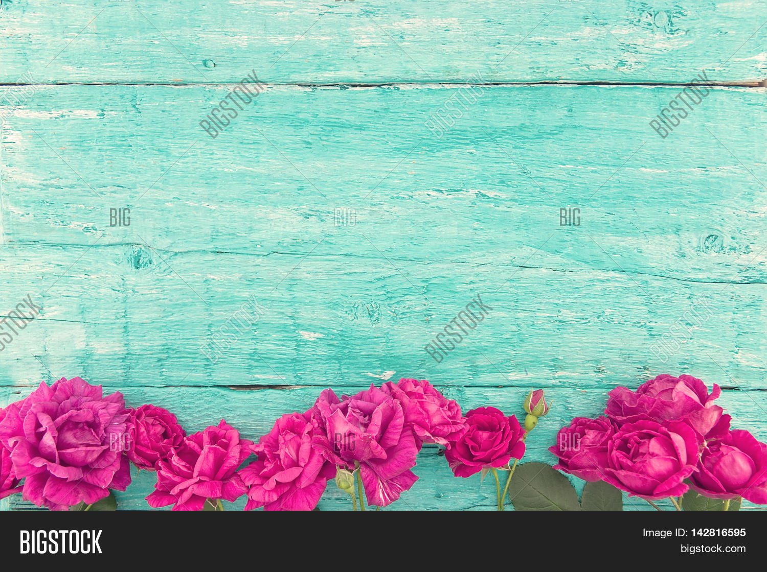 Frame Roses On Image Photo Trial Bigstock 1500x1120