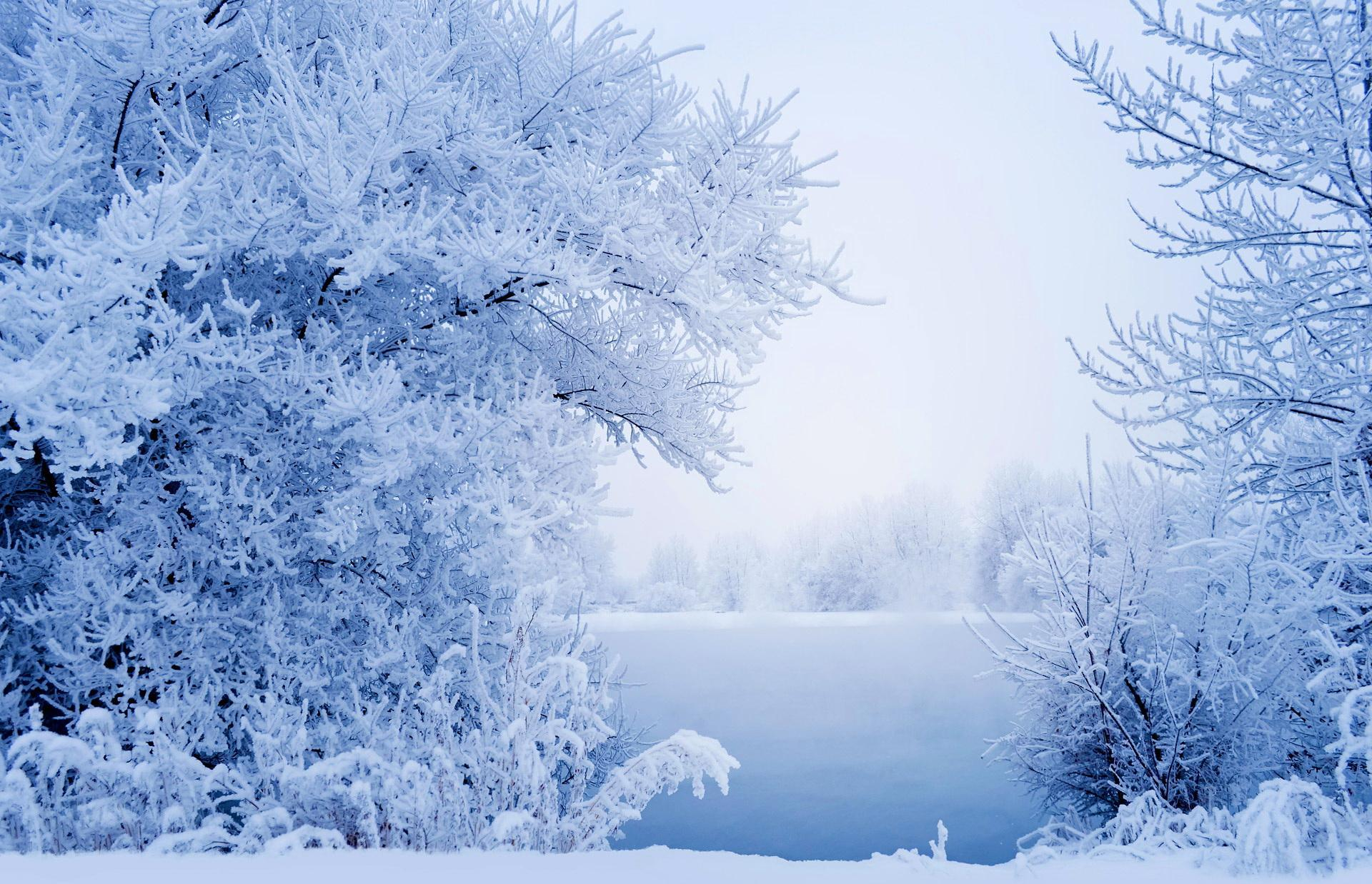 Winter Wallpapers For Android   New HD Images 1920x1238
