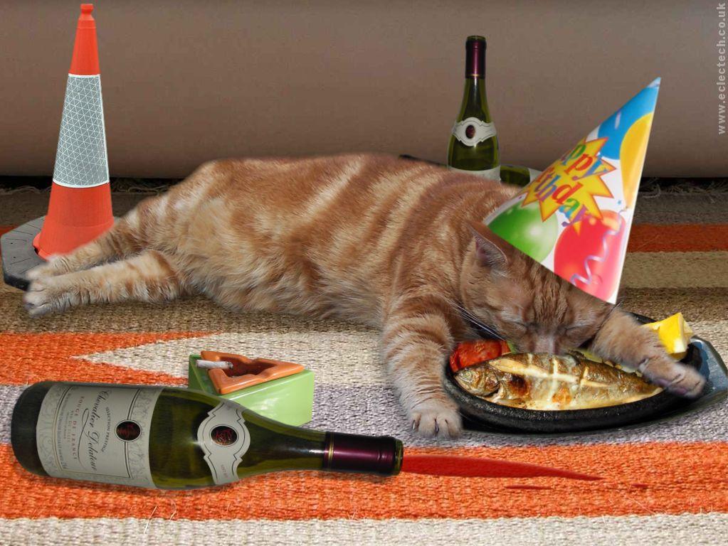 green laser pointer cat toy